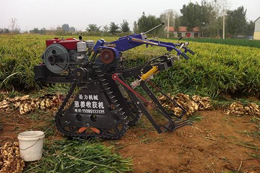 生姜收获机械